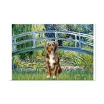 Bridge-Aussie Shep (#5) Mini Poster Print