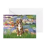 Lilies2-Australian Shep (#5) Greeting Cards (Pk of