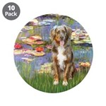 Lilies2-Australian Shep (#5) 3.5