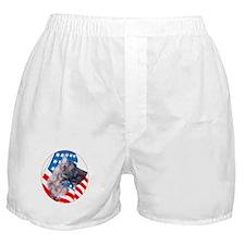 Brindle Dane with flag Boxer Shorts