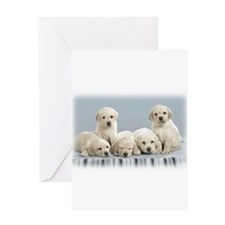 Unique Puppies Greeting Card