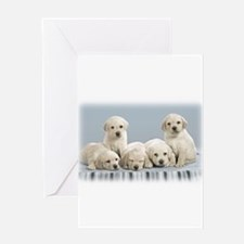 Cute Puppies. Greeting Card