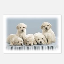 Cute Puppies. Postcards (Package of 8)