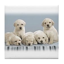 Cute Puppies. Tile Coaster