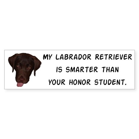 Smart Labrador Retriever Sticker (Bumper)