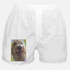 Dreamy Dog Boxer Shorts