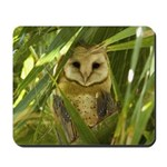 Palm Tree Owlet Mousepad