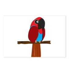 Eclectus Female Postcards (Package of 8)