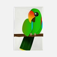 Eclectus Male Rectangle Magnet