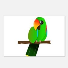 Eclectus Male Postcards (Package of 8)