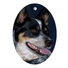 2 Dingos Oval Ornament