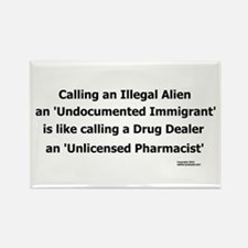 Undocumented Immigrant Rectangle Magnet (10 pack)