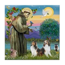 St Francis (W) - 2 Shelties (D&L) Tile Coaster