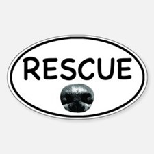 Rescue Nose White Oval Decal