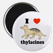 I Love Thylacines Magnet