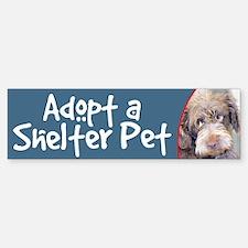 Adopt Shelter Pet-Brown Terrier Bumper Bumper Bumper Sticker