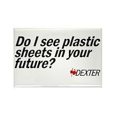 Plastic Sheets - Dexter Rectangle Magnet