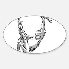 Orangutan hanging Decal