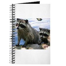 Racoon Buddies Journal