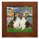 Lilies #2 / Two Shelties Framed Tile