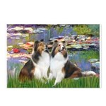Lilies #2 / Two Shelties Postcards (Package of 8)