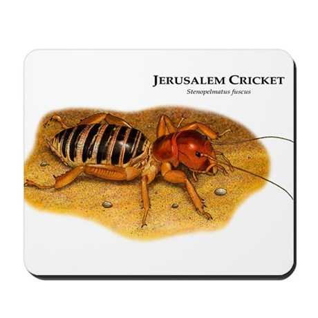Jerusalem Cricket Mousepad