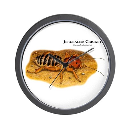 Jerusalem Cricket Wall Clock