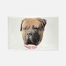 Bull Mastiff Rectangle Magnet (100 pack)