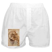 Da Vinci Art with Shakespeare Boxer Shorts