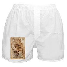 Christmas Shakespeare Da Vinci Boxer Shorts