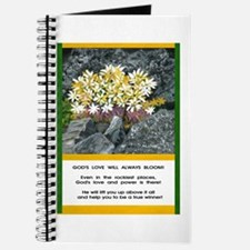Blooming Above The Rocks Journal