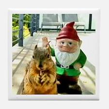 Squirrel Gnome Tile Coaster
