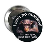 "I aint no Monkey A@L 2.25"" Button"