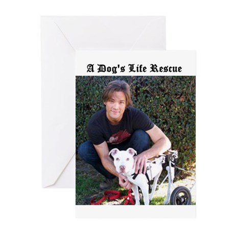 A Dog's Life Rescue Greeting Cards (Pk of 20)