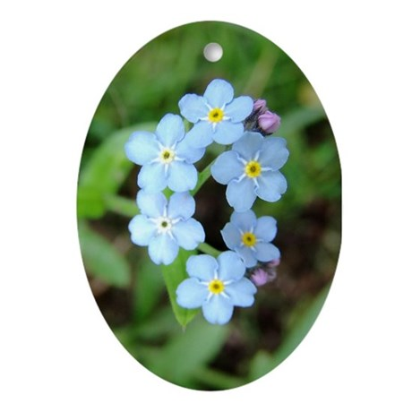 Forget Me Not Flower Blossoms - Keepsake (Oval)