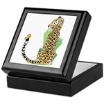 Animal Alphabet Jaguar Keepsake Box