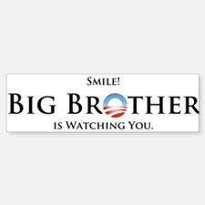 Big Brother Sticker (Bumper)