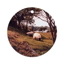 Sheep, County Galway, Ireland Ornament (Round)