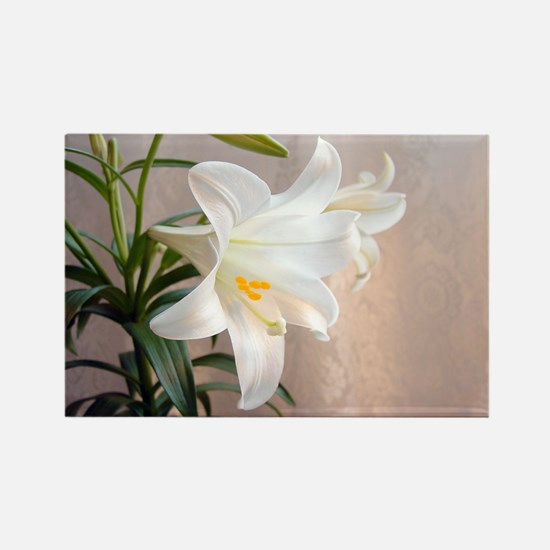 Easter Lily Rectangle Magnet