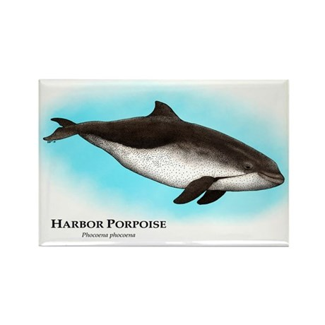 Harbor Porpoise Rectangle Magnet