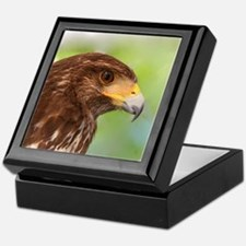 HARRIS`S HAWK Keepsake Box