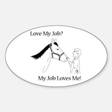 Equine Veterinarian (male) Decal