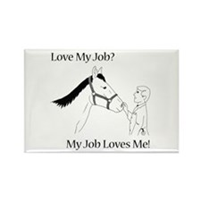 Equine Veterinarian (male) Rectangle Magnet