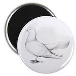 Flying Oriental Roller Pigeon Magnet