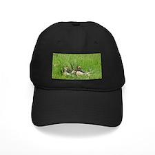 Cool Cheetahs Baseball Hat