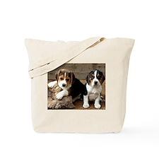 Beagle Pair Tote Bag