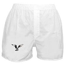 Osprey in Flight Boxer Shorts