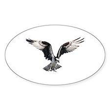 Osprey in Flight Decal