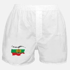 3D Map Of Bulgaria Boxer Shorts