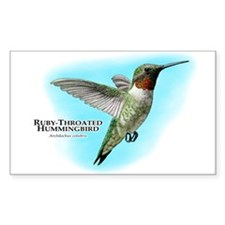 Ruby-Throated Hummingbird Decal